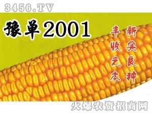新实-豫单2001河南招商中
