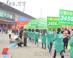 2016郑州中原肥料会整齐抢眼的火爆宣传队伍