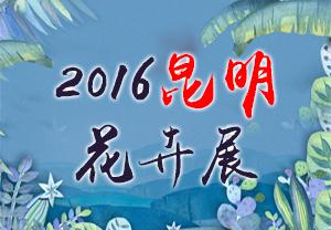 2016��������չ-2016��17���й�������ʻ���չ