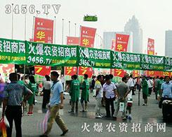 火爆龙8国际欢迎您招商网震撼出席2016河南种子会!