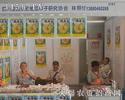 四川双流永安地瓜种子研究协会2016西南农资会震撼来袭