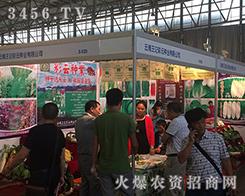 云南王记彩云种业在2016西南农资博览会上招商不断