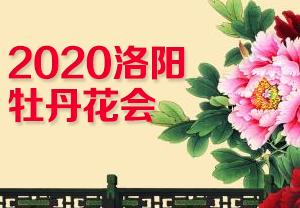 2020洛阳牡丹花会-2020年第38届洛阳牡丹文化节