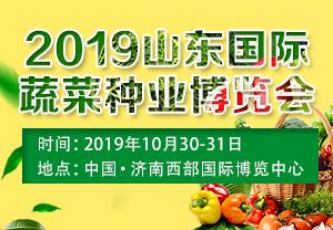 2019山东蔬菜种博会-中国·山东国际蔬菜种业博览会暨全国蔬菜登记品种现场观摩会