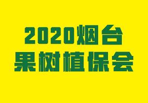 2020烟台果树植保会-2020第七届北方(烟台)果树植保展览会