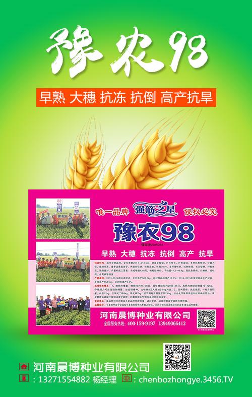 豫农98小麦种子怎么样 豫农98小麦种简介
