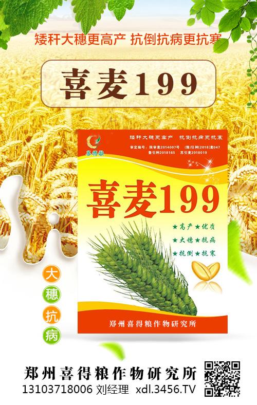 喜麦199