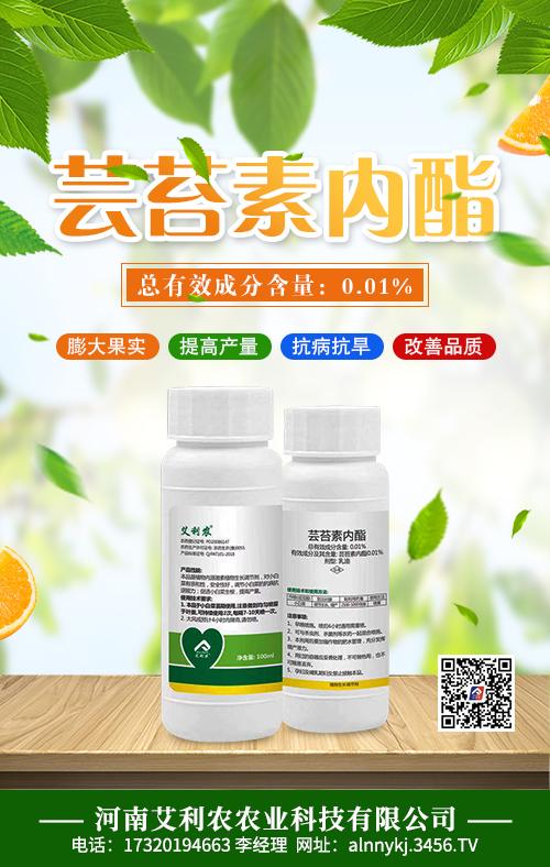 芸苔素内酯作用与功效 芸苔素内酯使用方法
