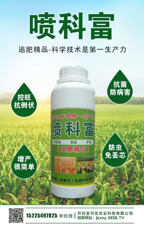 玉米适时晚收的好处 技术要点 增产效果