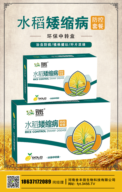 高产水稻前十名的品种 有什么特征 生产表现