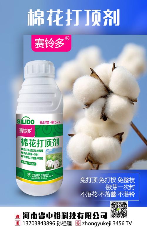 2020年棉花将大涨 国家对棉花补贴政策