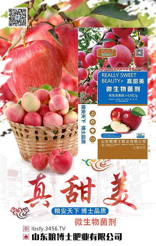 苹果追肥关键期,教你几招施肥方法省工又省力!