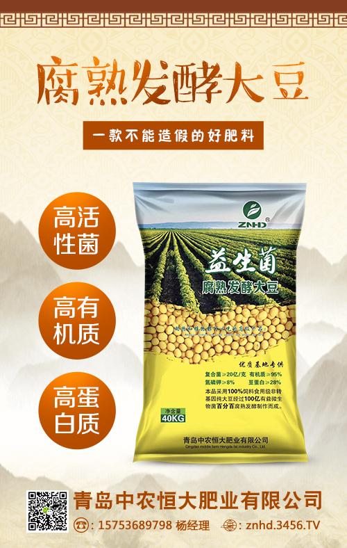 腐熟发酵大豆