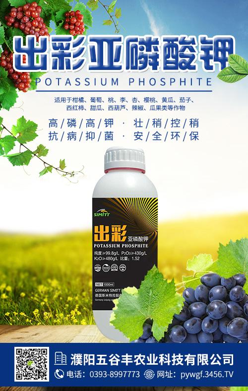 出彩亚磷酸钾