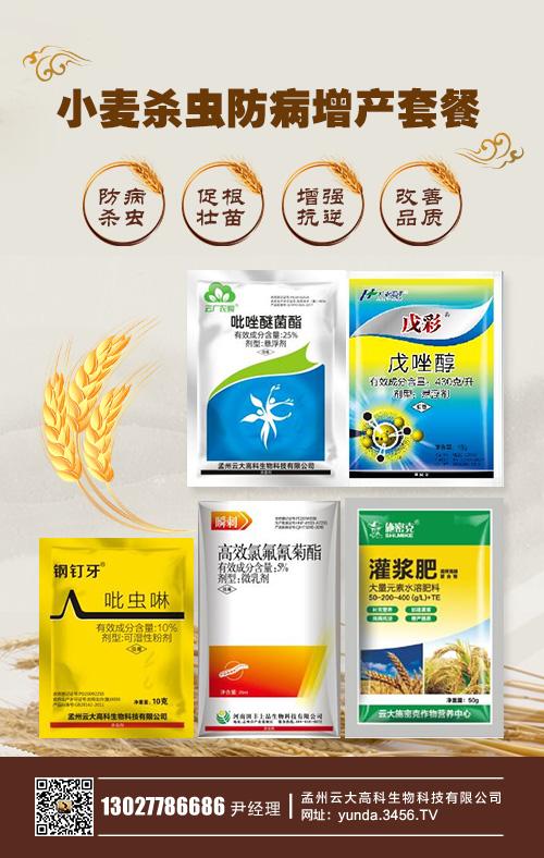 菌传小麦病毒病病害症状 发生规律 防治方法