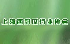 上海西甜瓜行业协会