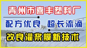 青州市喜丰塑料厂