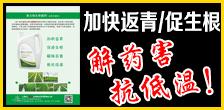 黑龙江北斗星农业科技开发有限公司