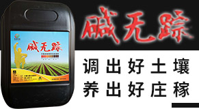 新疆百诺农业科技有限公司
