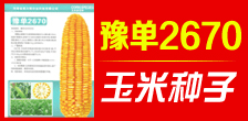 河南省奥尔粮农业科技有限公司