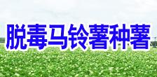 黑龙江兴佳薯业有限责任公司