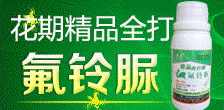 河南省春光农化有限公司