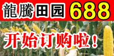 河南省龙腾种业万博manbetx官网客服