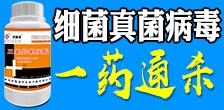 湖南精耕农业科技有限公司