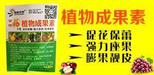 寿光市国城生物肥料有限公司