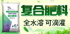 凯亚国际贸易(深圳)有限公司