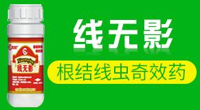 北京泰禾雨丰生物科技万博manbetx官网客服