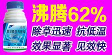 江苏汇丰科技万博manbetx官网客服