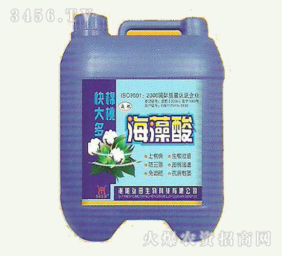 弘田-海藻酸
