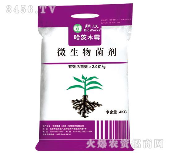 微生物菌剂-哈茨木霉肥-北沃农业