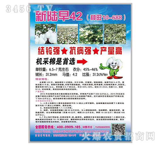 新陆早42-棉花种子-种旺农业