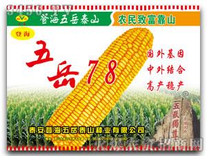 五岳泰山-登海-五岳78(玉米种子)