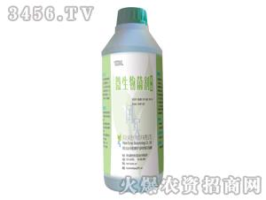 微生物菌剂(液体瓶)1