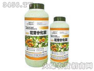 花芽分化素-康普生