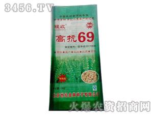 高抗69小麦种子-坤元种业