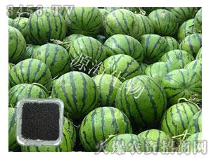 西瓜专用肥-源海生物