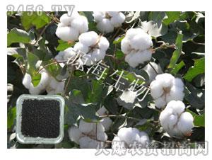 棉花专用肥-源海生物