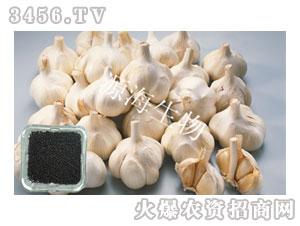 大蒜专用肥-源海生物