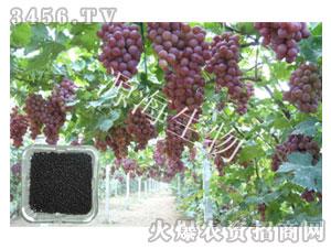 葡萄专用肥-源海生物