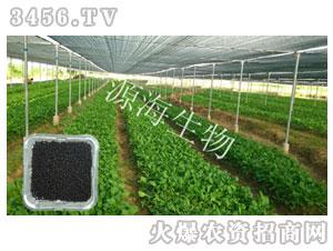 蔬菜专用肥-源海生物
