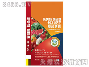 沃夫特硝硫基肥(硫酸钾型-含硝态氮≥6%)
