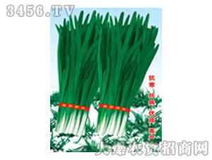 韭菜种子-神松九号雪韭