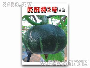 优阳特2号南瓜种子