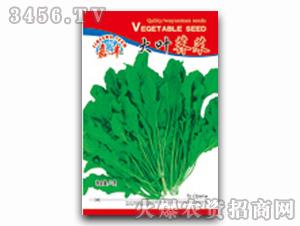 叶菜种子-大叶荠菜种子