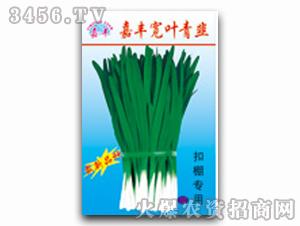 韭菜种子-嘉丰宽叶青韭