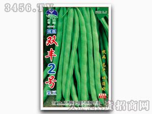 芸豆种子-超级老来少架豆